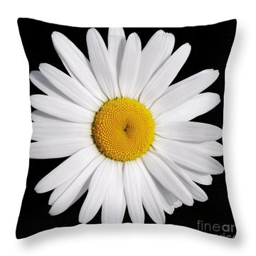Perfectly Daisy Throw Pillow