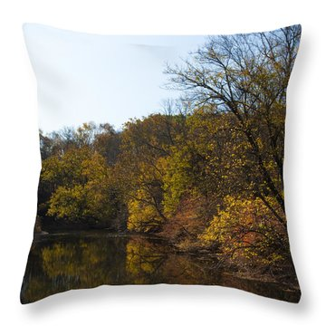 Perkiomen Creek In Autumn Throw Pillow by Bill Cannon