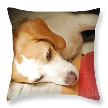 Perris Throw Pillow