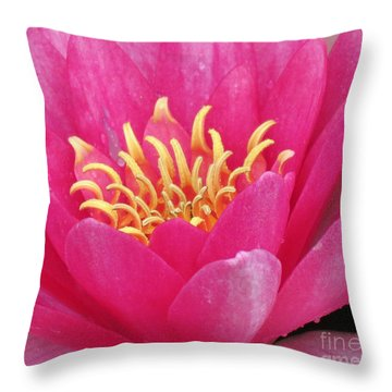 Perry's Fire Opal Water Lily Throw Pillow