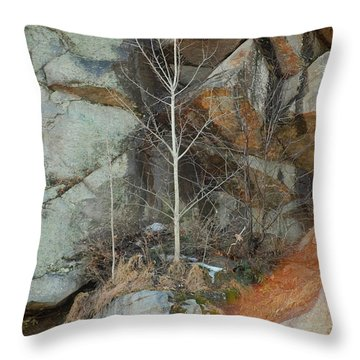 Throw Pillow featuring the photograph Perseverance by Mim White