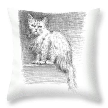 Persian Cat Throw Pillow by Sarah Parks