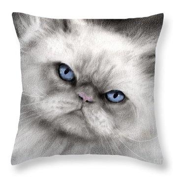 Persian Cat With Blue Eyes Throw Pillow by Svetlana Novikova