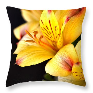 Peruvian Lily Throw Pillow
