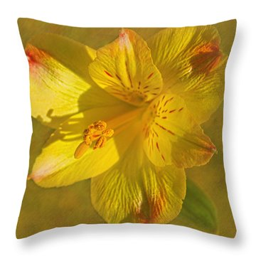 Peruvian Lily Throw Pillow by Sandi OReilly