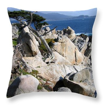 Pescadero Point Throw Pillow