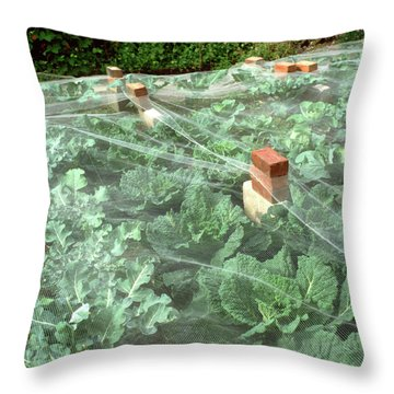 Vegetable Patch Throw Pillows