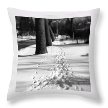 Pet Prints In The Snow Throw Pillow by Frank J Casella
