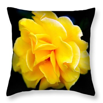 Petals And Lace Throw Pillow by Karen Wiles