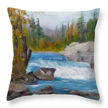 Peterborough Falls Throw Pillow
