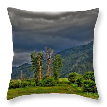 Petes Trees Throw Pillow