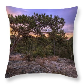 Petit Jean Mountain Bonsai Tree - Arkansas Throw Pillow