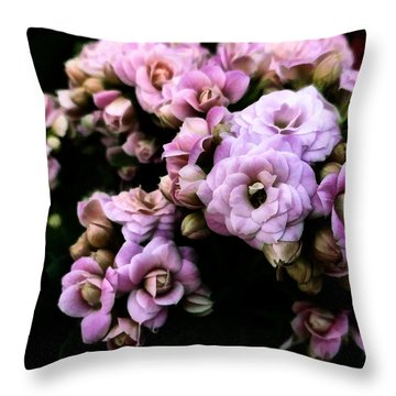 Petite And Pink Throw Pillow by Steve Taylor