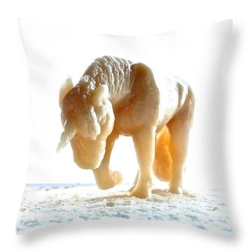 Throw Pillow featuring the photograph Petite Licorne Doree Sortant De La Lumiere by Marc Philippe Joly