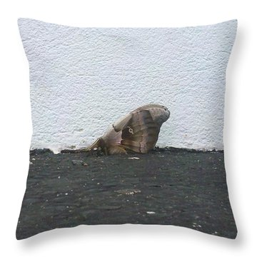 Petrified Butterfly Throw Pillow