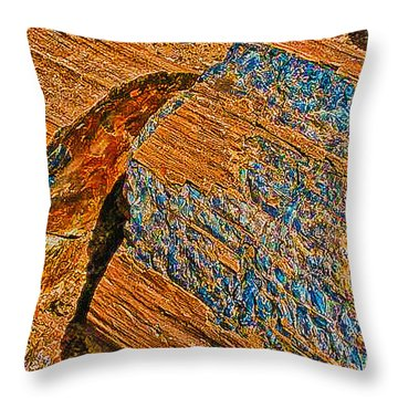 Petrified Forest Logs Throw Pillow by Bob and Nadine Johnston