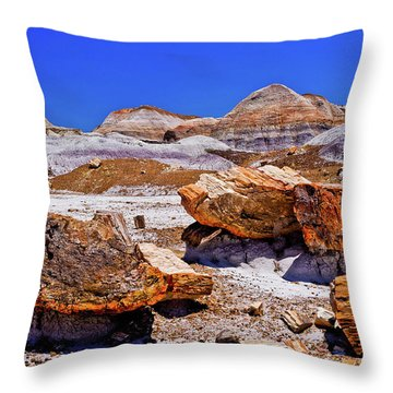 Throw Pillow featuring the photograph Petrified Forest - Painted Desert by Bob and Nadine Johnston