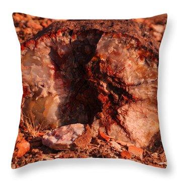 Petrified Log Throw Pillow
