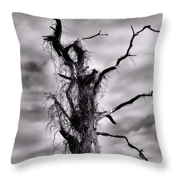 Petrified Tree Throw Pillow