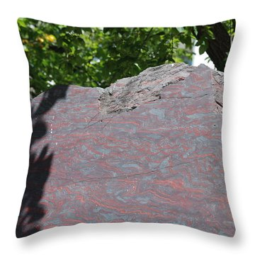 Petrified Wood On Display Throw Pillow