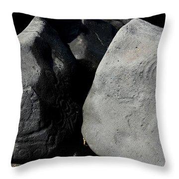 Throw Pillow featuring the photograph Petroglyphs Las Labradas by Rebecca Parker