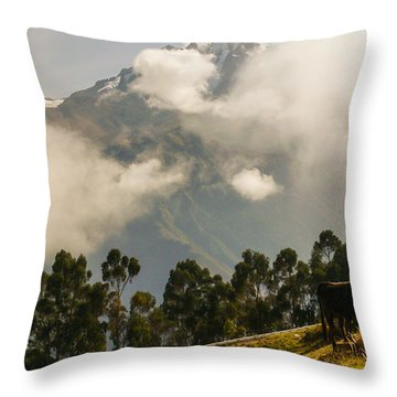 Peru Mountains With Cow Throw Pillow