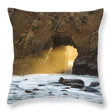 Pfeiffer At Sunset Throw Pillow