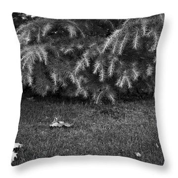 Throw Pillow featuring the photograph PG by Dorin Adrian Berbier
