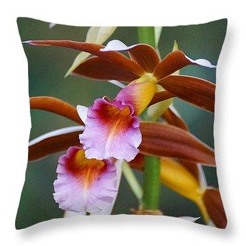 Phaius Tankervilliae Orchid Throw Pillow