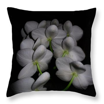 Phalaenopsis Backs Throw Pillow
