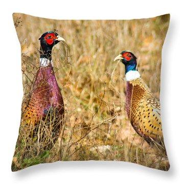 Pheasant Friends Throw Pillow