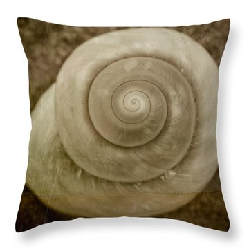 Phi 2 Throw Pillow by Ryan Weddle