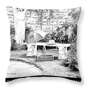 Philadelphia Flower Show Display 1916 Throw Pillow