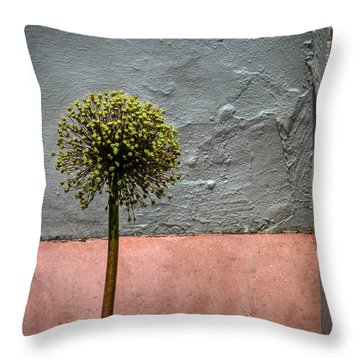 Throw Pillow featuring the photograph Philly Plant by Glenn DiPaola