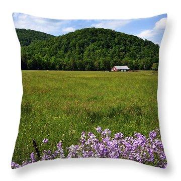 Phlox And Barn Throw Pillow by Thomas R Fletcher