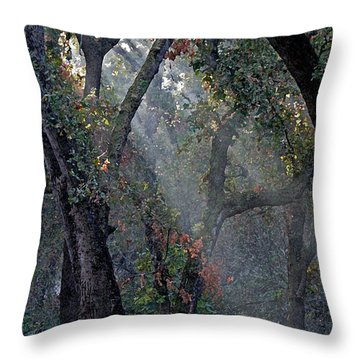Phorest Lights Throw Pillow