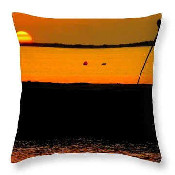 Photographer's Dream Throw Pillow by Karen Wiles