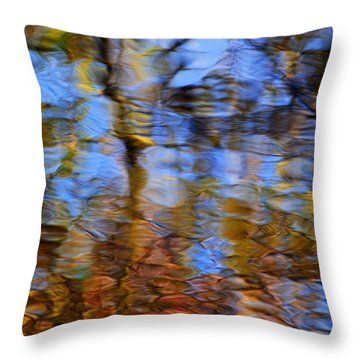 Photographic Painting Throw Pillow by Frozen in Time Fine Art Photography