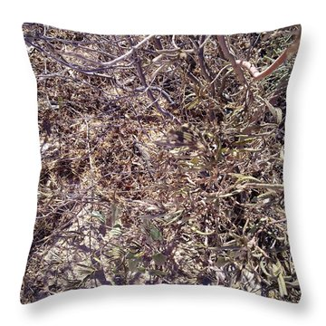 Throw Pillow featuring the photograph Phylum by Ramona Matei
