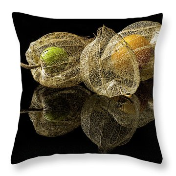 Berry Fruit Throw Pillows