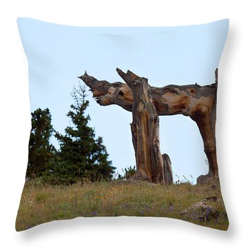 Pi In The Sky Throw Pillow by Jim Garrison