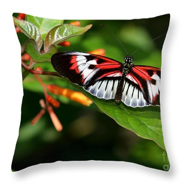 Piano Key Butterfly On Fire Bush Throw Pillow