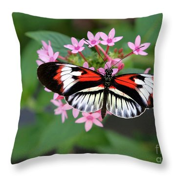 Piano Key Butterfly On Pink Penta Throw Pillow