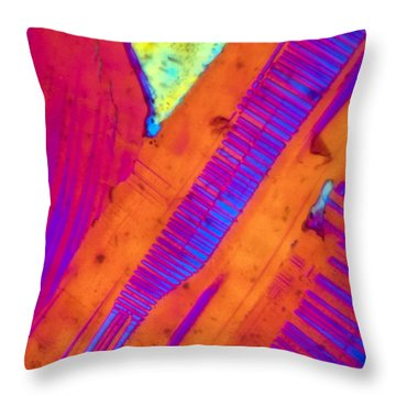Piano Keys Throw Pillow by Tom Phillips