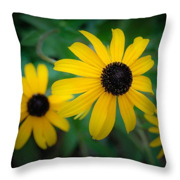 Pick Me Throw Pillow by James Barber