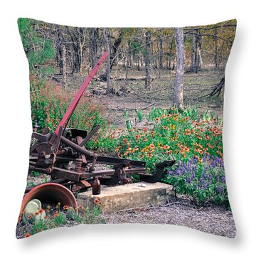 Pickle Creek Ranch Botanical Garden Throw Pillow