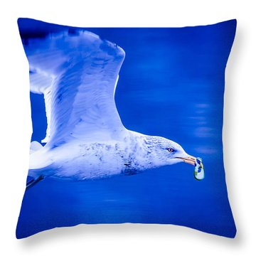 Throw Pillow featuring the photograph Pickle Thief by Brian Stevens