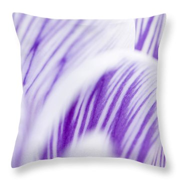 Pickwick Throw Pillow by Anne Gilbert