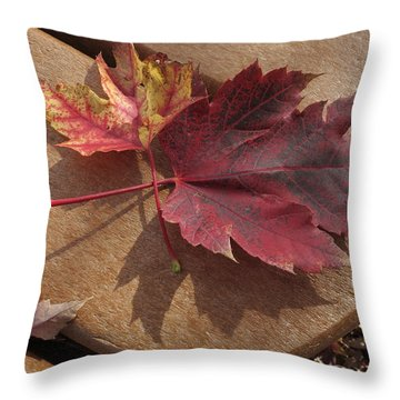 Picnic For Two Throw Pillow