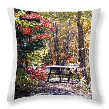 Picnic Memories Throw Pillow